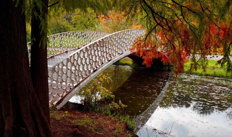 листья, природа, лес, park, trees, colorful, осень, река, water, pictures,