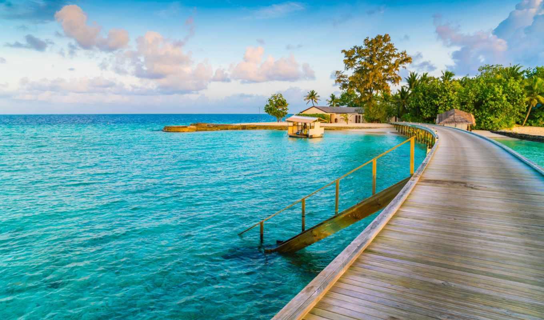 море, palm, песок, пляж, остров, tropical, summer, рай, goodfon, journey