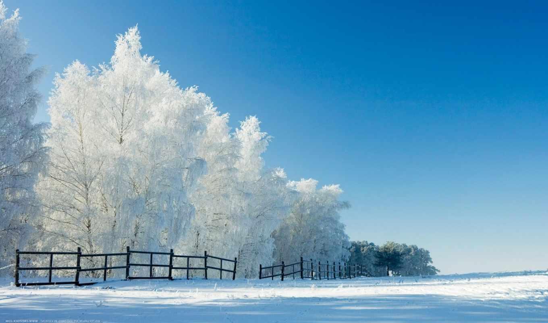 www, url, radikal, всех, праздниками, предстоящими, osen, oboi, производственный, календарь, год, зимние, осень,
