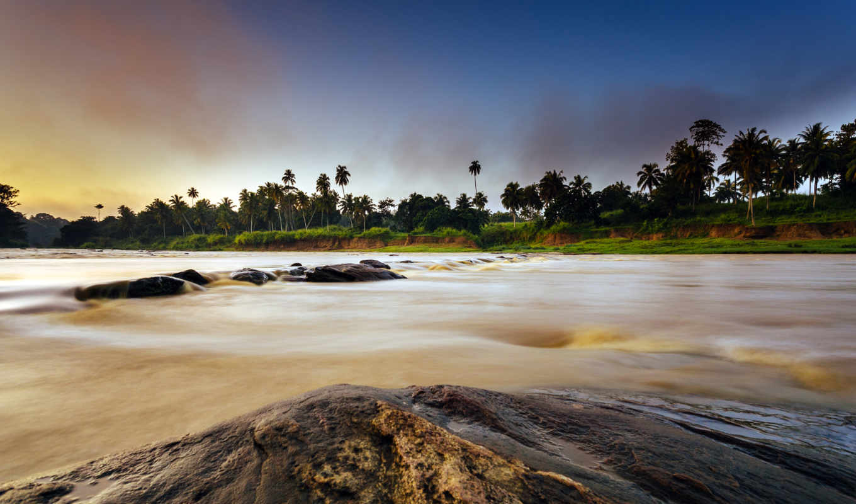 камни, река, misty, pantalla, sri, lanka, пальмы,