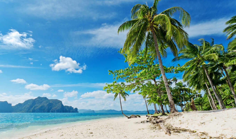 пляж, пальмы, море, песок, oblaka,