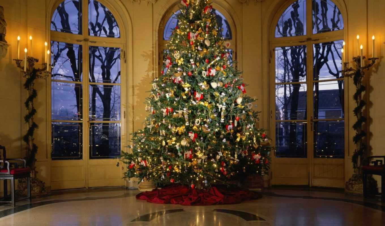 украшения, праздник, елка, дом, герлянды, год, елки, новый, новогодней, смотрите, новогодние, дек,