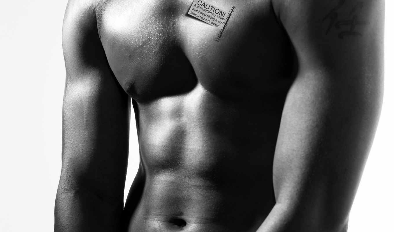 торс, мужчина, тело, мужчины, мускулы, мышцы,