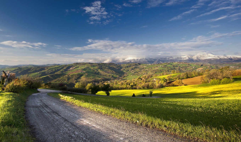 дорога, пейзаж, лето, поле, картинку, картинка,