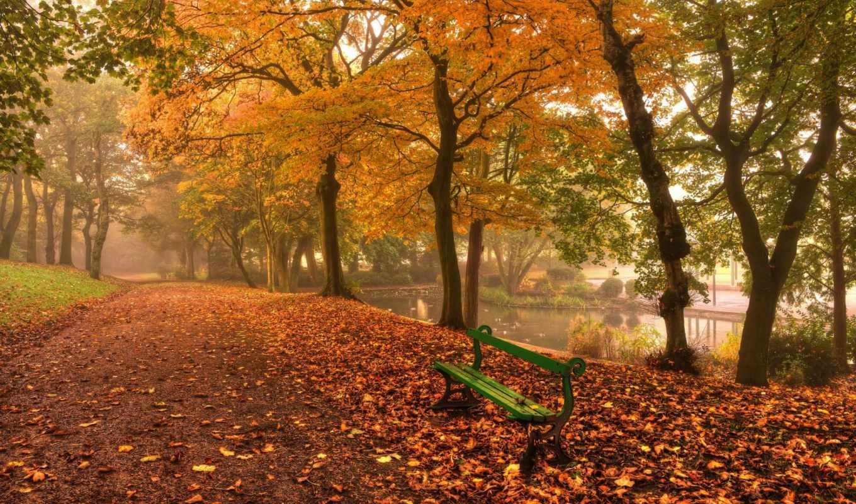 скамейка, осень, парке, park, download,