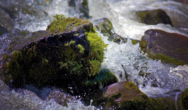 камни, water, брызги, капли, мох, ток, waters, река,
