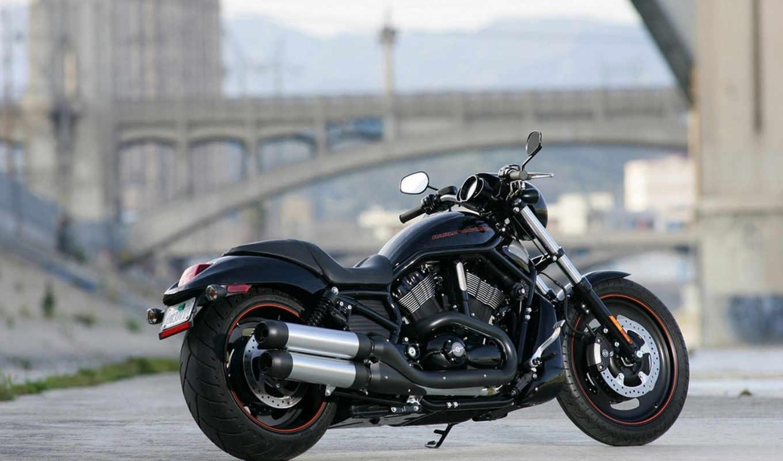 мотоцикл, ночь, спец, davidson, harley, rod, vrscdx,