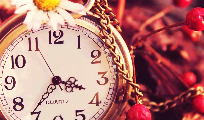 природа цветы часы  № 1520747 без смс