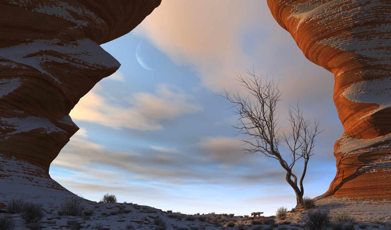 обои, дерево, природа, небо, облака, скалы, волки,