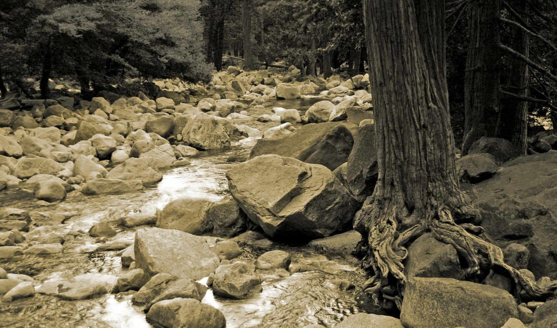 белые, чёрно, просмотреть, камни, облака, природа, деревья, мрачные, туман, desktop, высота, пейзажи, озеро, free, creek, naturaleza,