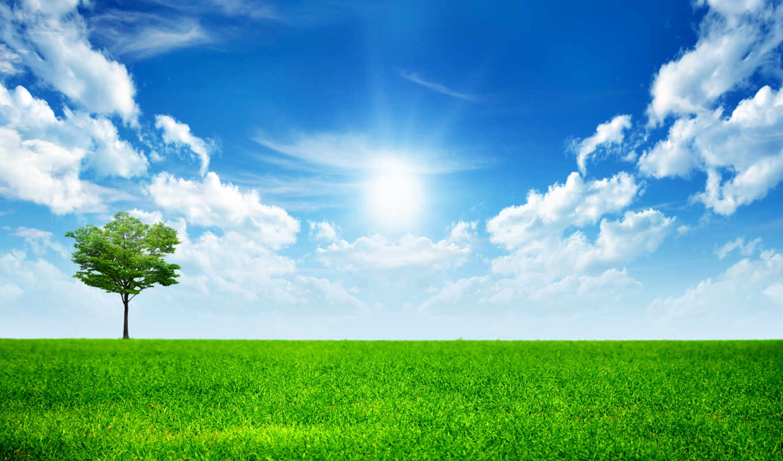 природа, mobile, зелёный, австрия, landscape, трава, android,