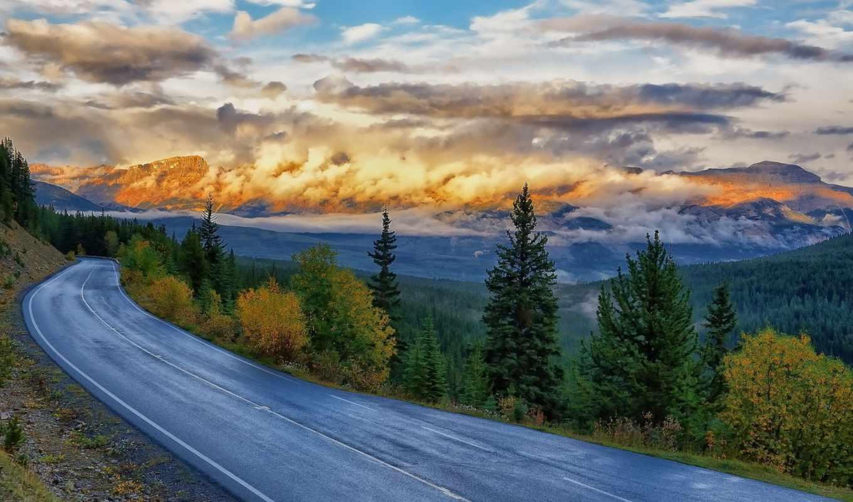 дорога, серпантин, trees, природа,