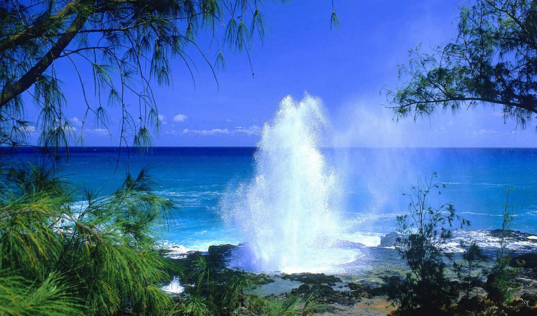 kauai, spouting, horn, пейзаж, island, free, всем, you, пейзажи, one, сша, моря, гейзер, морской, hawaiian, download,