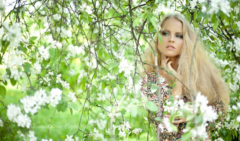 blonde, девушка, devushki, украшения, trees, цветущие, дерева, ветвях, cvety, солнечные, аватарки,