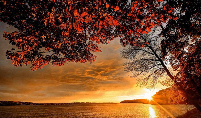 осень, природа, небо, истинном, смотреть, обою, размере, года, времена, побережье,
