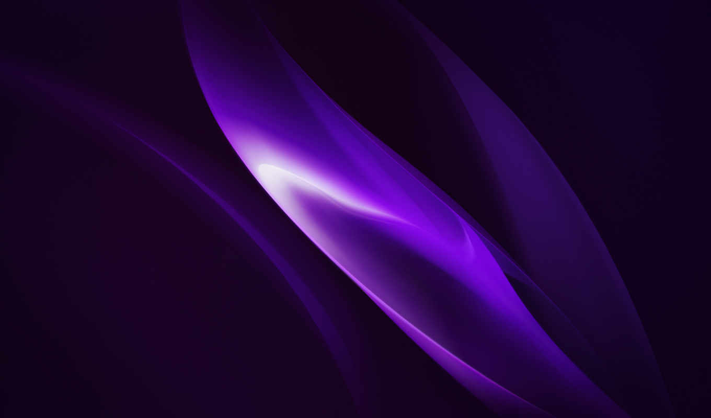 ,, пурпур, фиалка, computer wallpaper, макросъемка, пурпурный, oppo r15 pro,