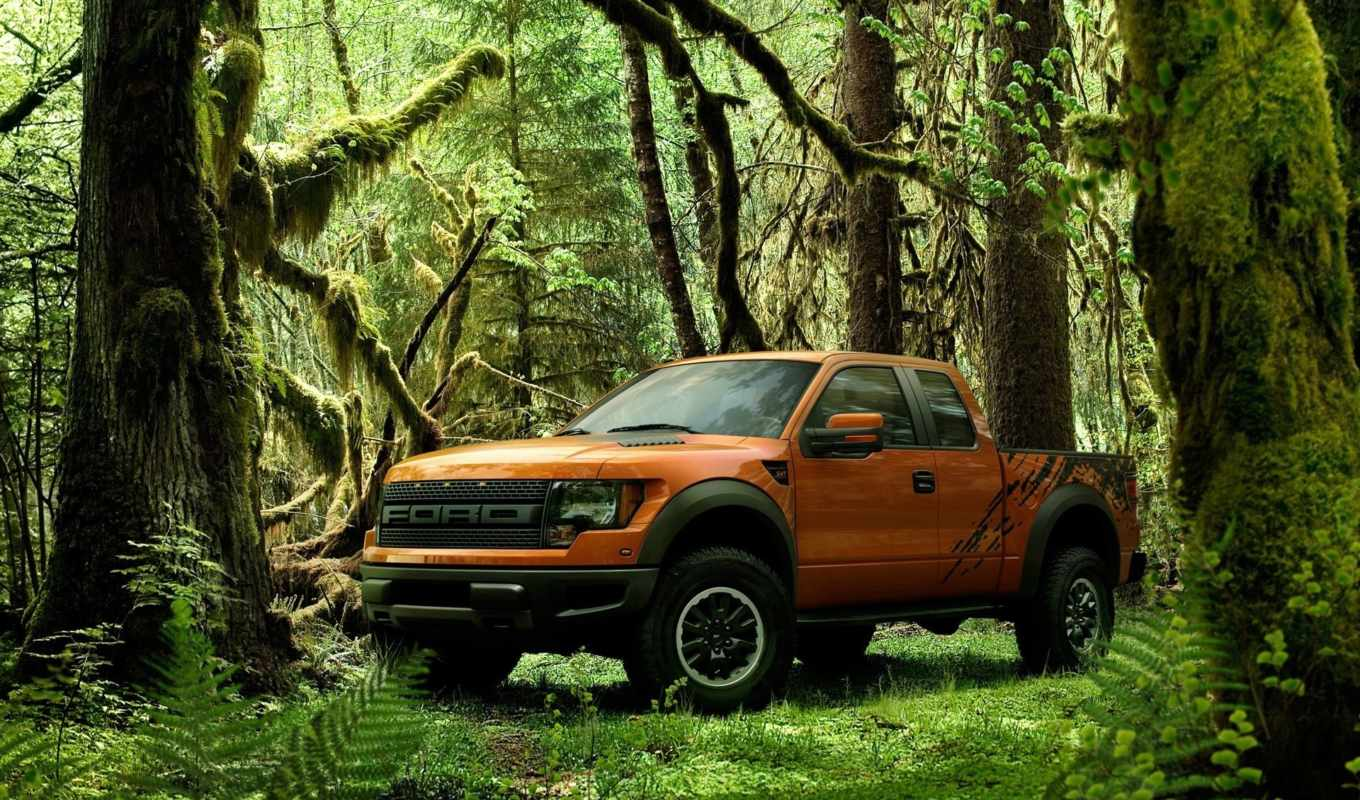 ford, raptor, jungle, svt, cars,