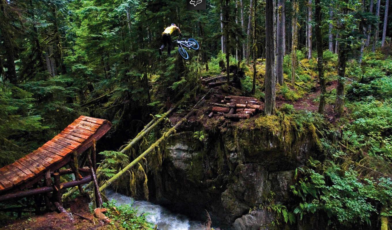 freeride, лес, трамплин, байк, тэйлвип, река, tailwhip,
