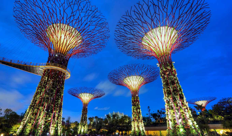 singapur, singapore, ogród, share, tapeta, tapety, darmowe, вечер,