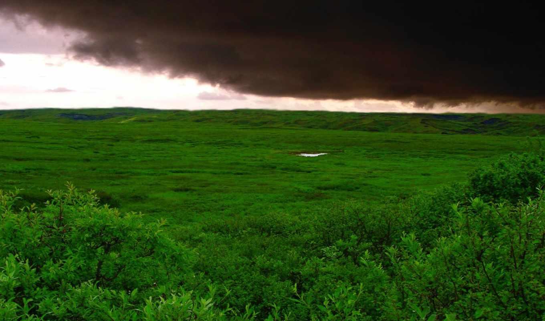буря, поле, облака, трава, зелёный, катаклизмов, красивые, дек,