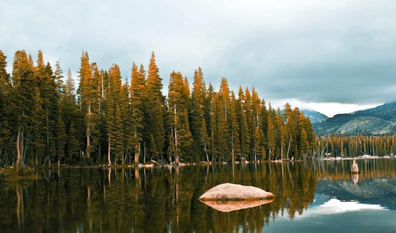 озеро, деревя, река, water, лесное, камни, деревьев, верхушки, пейзажи -, леса,
