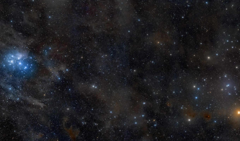 звезды, созвездие, плеяды, телец, гиады,