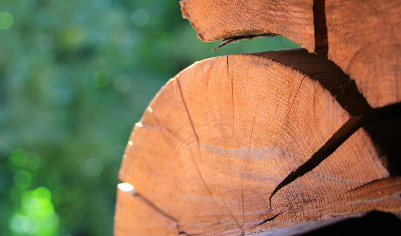 дерево, сруб, макро, деревянный, трещины,