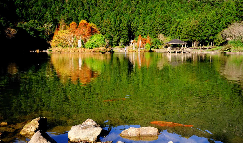 озеро, природа, park, камни, осень,