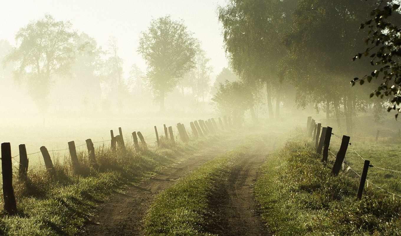 утро, рассвет, дорога, туман, трава, лес, природа, девушка, забор,