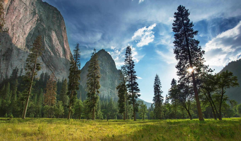 park, national, yosemite, национальный,