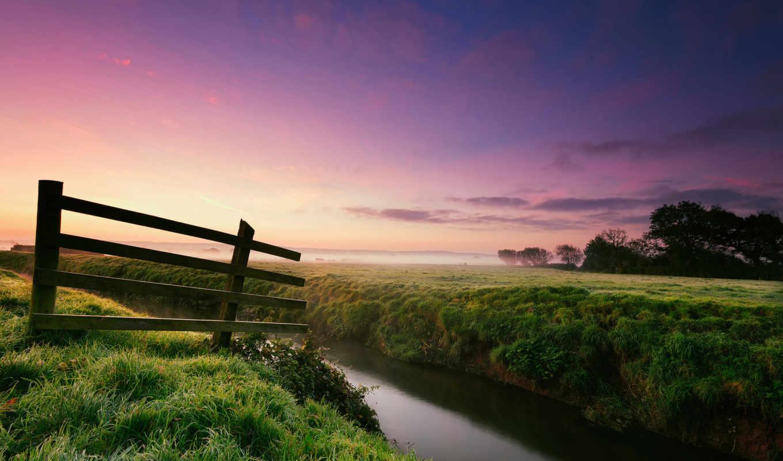 природа, роса, утро, трава,