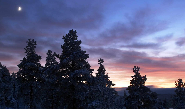 sunset, northern, морозный, швеции, швеция, пейзаж, северной, лес, синее, зимнее, сиреневое, desktop, winter, nature, scenery,