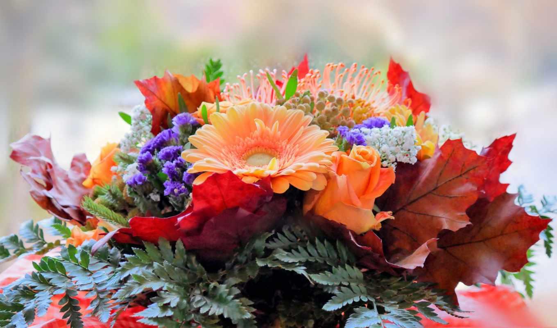 Красивые картинки с осенними цветами для вдохновения и хорошего настроения, прикольные