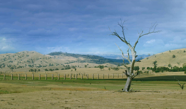 countryside, victorian, natosaurus, природа,