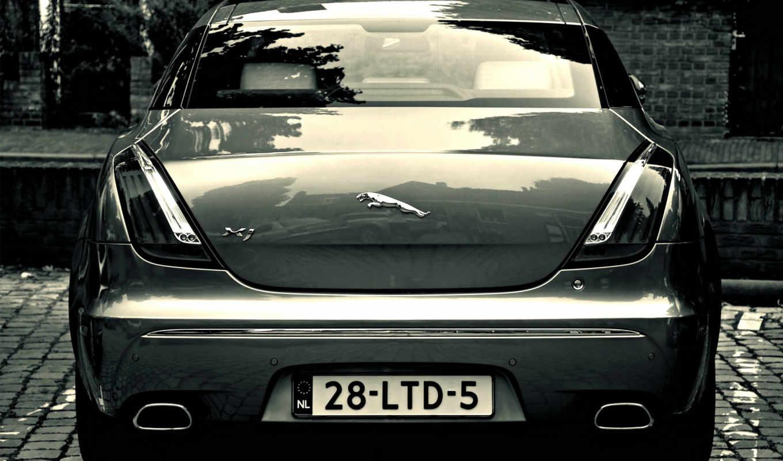 изображение, jaguar, logo, подборка, красивых, девушек, xk, car,