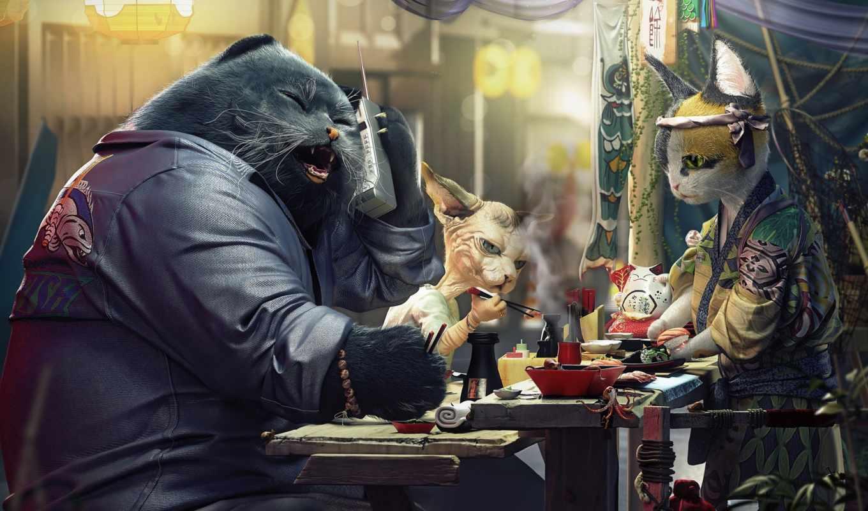,, кошка, desktop wallpaper, изображение, фотография, цифровое искусство, животное, кошачий корм, Япония, домашнее животное