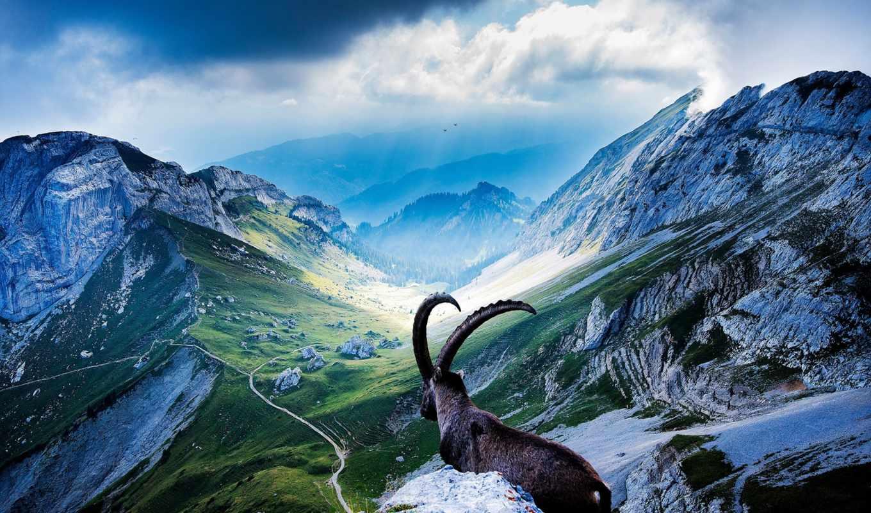 swiss, ram, пилатус, банки, мире, самые, гора, надежные, красивая,