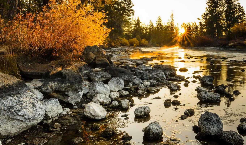 солнца, вконтакте, природа, ворошить, птичий, природы, красивые, игры, закатами, красивыми, sun,