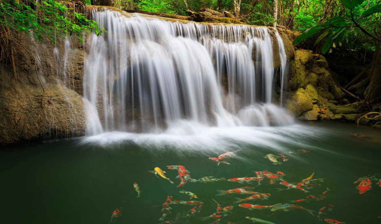 природа, лес, таиланд, waterfall, река,