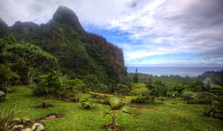 сады, gardens, hawaii, botanical, eu, парки, изображение, деда, картинка, природа,
