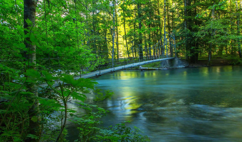 природа, summer, леса, реки, мосты, usa, деревья,