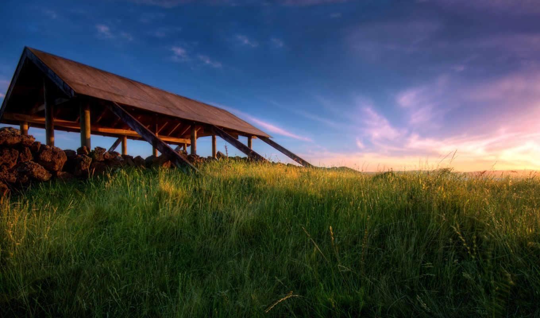широкоформатные, поле, wallpaper, hd, трава,