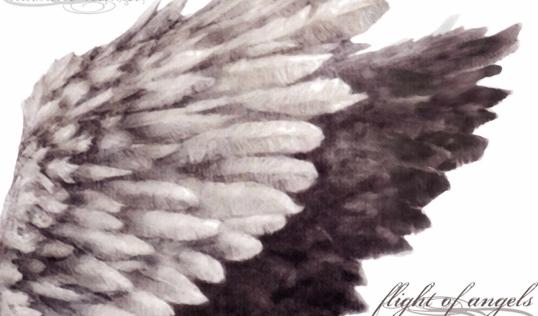 angel, девушка, fantasy, dark, ангелы, angels, art,