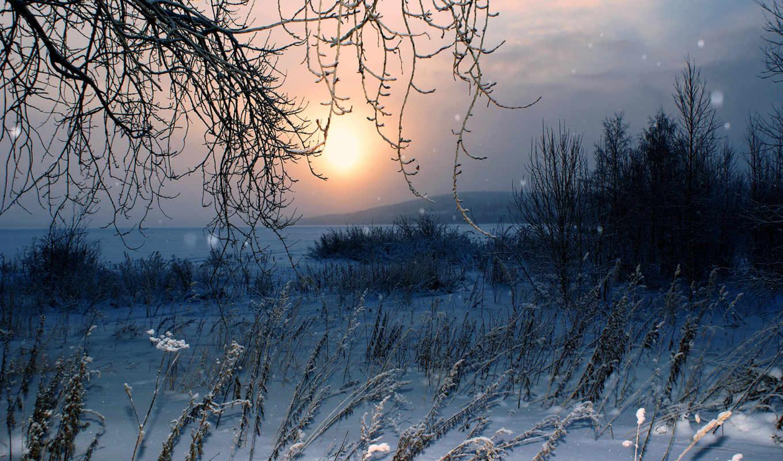 зима, снег, природа, широкоформатные, залил, fonomen,