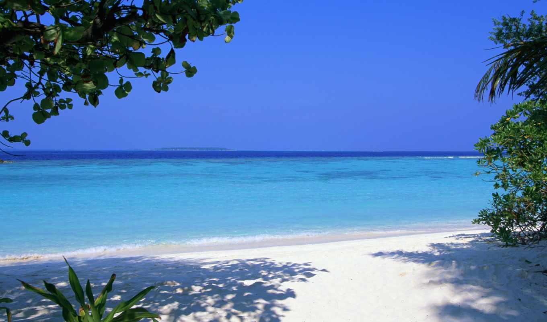 tropical, взгляд, maldives, пляж, море,