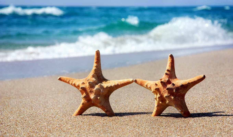 море, пляж, клипарт, песок, pack, девушка, морскими,