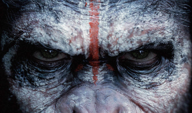 обезьян, planet, revolution, качества, этого, нужный, выберите, высокого, сайте, нашем,