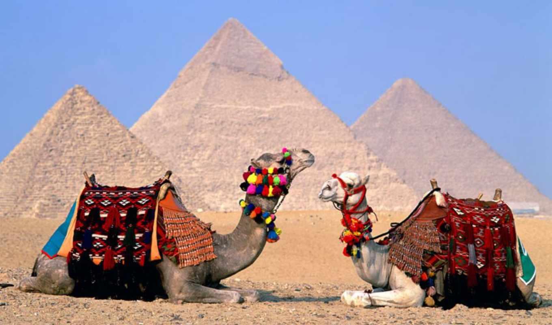 красоты, египет, египте, туры, египта, отдых, эль, море,