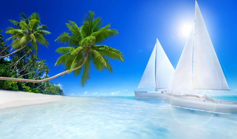 пляж, море, пальмы, фотообои, отдых, tropics, tropical, palm,