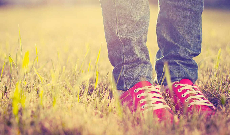 ноги, кеды, туфли, трава, свет,